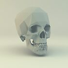 Skull Low Poly by error23