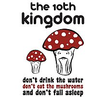 The 10th Kingdom: The Mushrooms Photographic Print