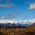 Alaska range near Denali NPS by Jan Timmons