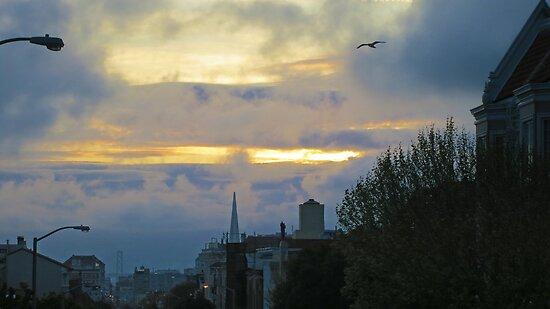 San Francisco Foggy Sunrise by David Denny