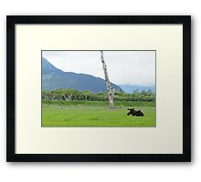 And That is a Moose Framed Print