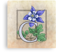 C is for Columbine - full image Canvas Print