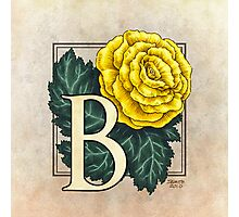 B is for Begonia - full image Photographic Print