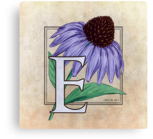 E is for Echinacea - full image Canvas Print