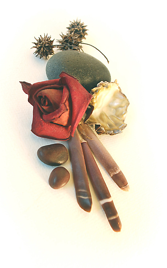 rose, spines, oyster, sweetgum pods still life by AnjiMarth