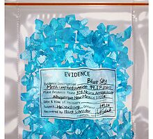 W.W. Blue Sky meth. (DEA Evidence) by Emiliano Morciano