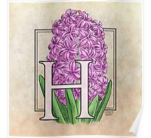 H is for Hyacinth - full image Poster