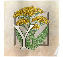 Y is for Yarrow Poster