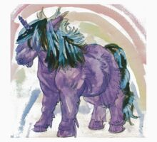 my little shetland pony and rainbow by Ashley Peppenger