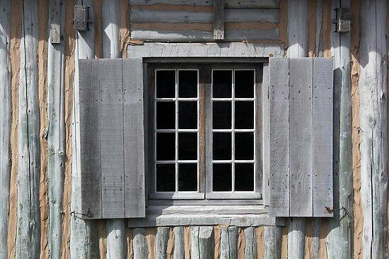 Gray Window Closeup by marybedy