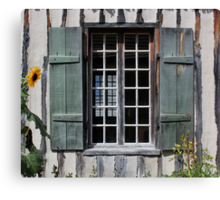 Green Window with Sunflower Canvas Print