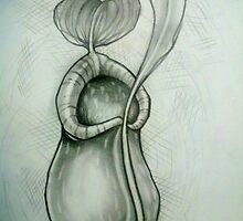 pitcher plant study. by resonanteye