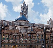 Siena Cathedral by Adrian Alford Photography
