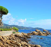 Coastline in Le Lavandou  var cote d'azur provence, France by 7horses