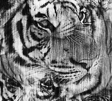 Black and White Layered Tiger Vintage by silvianeto