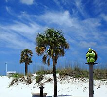 Turtle Beach, Clearwater by Wrayzo