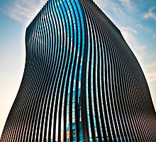 Gangnam Curves by Belle  Nachmann