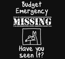 Budget Emergency! (Darker version) by firstdog