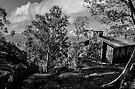 Mt Buffalo Summit Hut by bekyimage