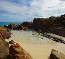 Seaside Inlet by Chelsea McCann