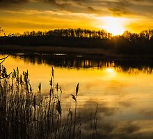 Sunset over the Lake by Heidi Stewart