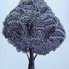 The Scribble Tree by Deborah Pass
