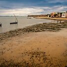 Low Tide (IlhaMoç) by Tim Cowley