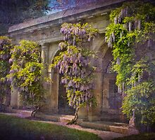 Wisteria Garden Waltz  by Marilyn Cornwell