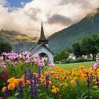 Chamonix-France by MIRCEA COSTINA