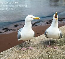 Two Herring Gulls Chatting by Nick Jenkins