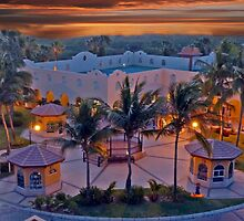 Cabo Evening Sunset by phil decocco