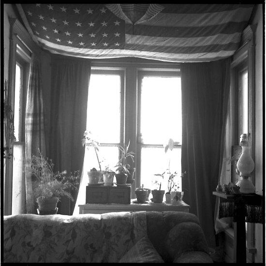Flag by Barbara Wyeth