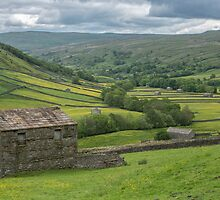 Barns in Swaledale by Judi Lion