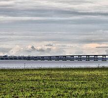 Bridge by WeeZie