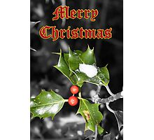Merry Christmas - Holly Photographic Print