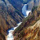 Grand Canyon at Yellowstone by Steve Upton