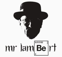 Breaking Bad - Mr Lambert by TheFinalDonut