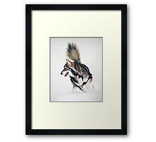 Snow Dog Framed Print