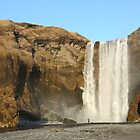 Icelandic Waterfall by Judi Lion