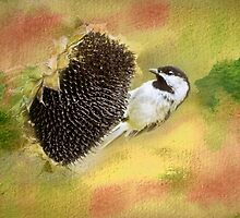 Black Capped Chickadee Harvesting Sunflower Seeds by Diane Schuster