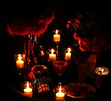 Day of the Dead Altar by Kerri  Crau