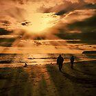 Rays and Shadows by Marilyn O'Loughlin
