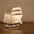 Come Sail Away by Monnie Ryan