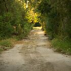Dirt Road by ValeriesGallery