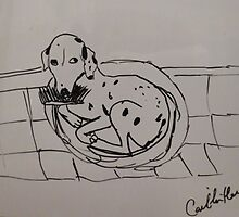 Dalmatian - the brush thief by caitlin2005