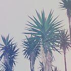 Vintage Palms by Leah Flores