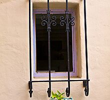 A Simple Window by John Butler