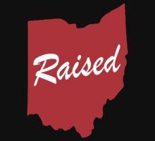 Ohio Raised Logo by JamesChaffin