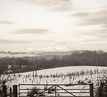 View of The Isle of Arran from Coylton in Winter by AyrshireImages