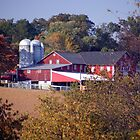 Pennsylvania Barn and Silos - Fall Foliage Farm Scene  by Studio-one